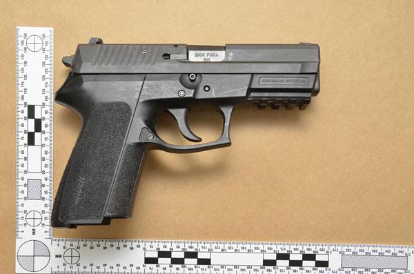 firearm200220161
